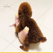 Dog Masturbators Realistic Pig Toy India